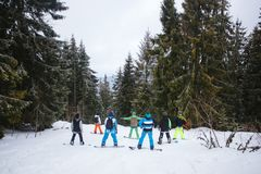 Company of snowboarders among the forest in the mountains. Company of snowboarders among the forest in the mountains Stock Images