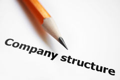 Company structure Royalty Free Stock Image