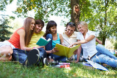 Company of students Royalty Free Stock Image