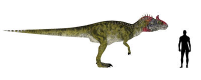 Comparação do tamanho de Cryolophosaurus Fotografia de Stock