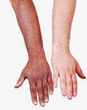 Comparable white hand and black Royalty Free Stock Images