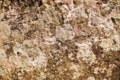 Compare na pedra Textura de pedra com teste padrão natural superfície Foto de Stock Royalty Free