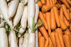 Comparez la couleur au radis et au Caroot photographie stock libre de droits