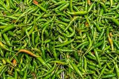 Comparez la couleur aux piments rouges et aux piments verts photo stock