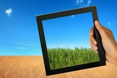 Comparez le désert et l'herbe verte photos stock