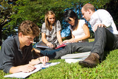 Comparing notes. Four university students comparing their notes from college, sitting in the park on a beautiful day royalty free stock image
