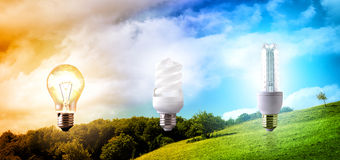 Comparison between various types of light bulb on landscape back Royalty Free Stock Photo