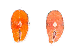 Comparison between wild and farmed salmon blocks on white backgr Stock Image