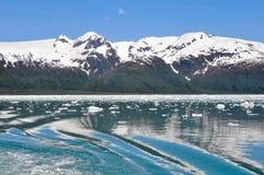Compartiment d'Aialik, fjords NP, Alaska de Kenai Photographie stock libre de droits