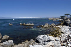 Compartiment de Monterey Images libres de droits