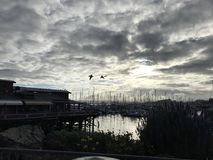 Compartiment de Monterey Photo stock