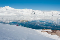 Compartiment de paradis en Antarctique Images libres de droits