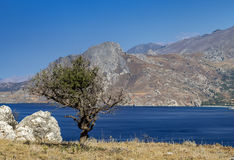 Compartiment de Plakias, Crète Images libres de droits