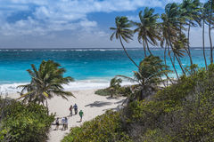 Compartiment inférieur Barbade Images libres de droits