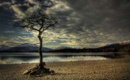 Compartiment milarrochy de Loch Lomond Photographie stock libre de droits