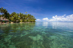 Compartiment tropical, Fiji Photos libres de droits