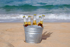 Compartimiento de cerveza helada en la playa Imagenes de archivo