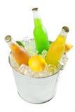 Compartimiento en el hielo con las bebidas Fotos de archivo libres de regalías