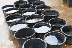 Compartimientos de agua para los caballos de consumición Imagen de archivo
