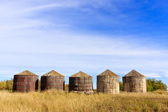 Compartimientos de almacenaje de madera del grano Fotografía de archivo libre de regalías