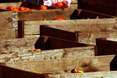 Compartimientos de madera Fotos de archivo