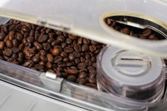 Compartment filled up the coffee machine. Royalty Free Stock Images