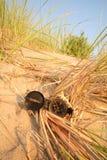 Compas détruit sur une dune de sable. images libres de droits