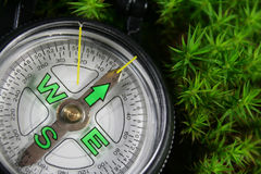 Compass. In the green moss Stock Image