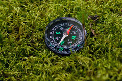 Compass. Chenym dial in green moss as a direction Stock Photos