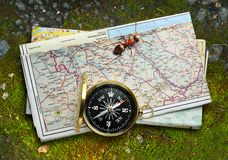 Compass, ant and map Royalty Free Stock Image