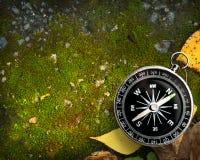 Compass on autumn foliage Royalty Free Stock Image
