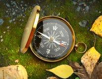 Compass on autumn foliage Stock Image