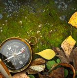 Compass on autumn foliage Stock Images
