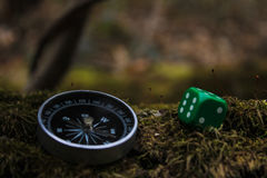 Compass and bones. Against the background of blooming nature stock photos
