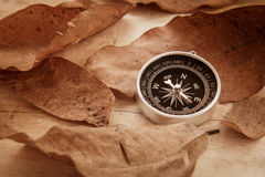 Compass and dried leaves on old wooden background, filtered imag Royalty Free Stock Images