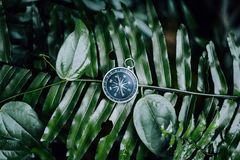 Compass among fern leaves in a tropical jungle. Adventure discovery navigation concept.  stock images