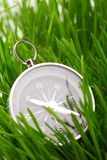 Compass in green grass Royalty Free Stock Image
