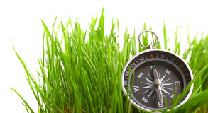 Compass in green grass Stock Photos