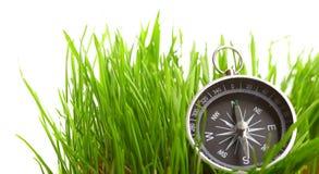Compass in green grass stock photos