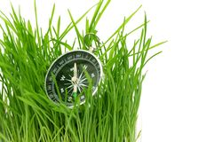 Compass in green grass Royalty Free Stock Photos