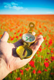 Compass in a Hand / Discovery / Beautiful Day. / Red Poppies in Nature Stock Photo