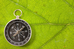 Compass on the leaf texture Royalty Free Stock Photo