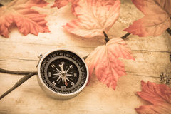 Compass and leaves on old wooden table, vintage style Stock Image