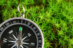 Compass in the moss. Compass in the green moss Stock Images