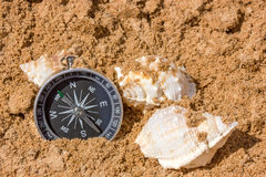 Compass and seashells Stock Images