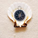 Compass in shell Stock Images