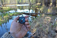 With compass in a spring forest. Stock Image