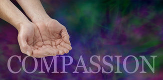 Compassion banner. Wide banner with a man's hands in a cupped needy position and the word COMPASSION below on a dark green and purple modern  background with Stock Image