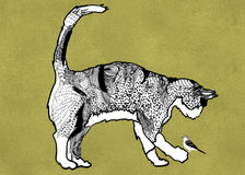 Compassionate Cat. Monochromatic Illustration of a big cat and a little bird Royalty Free Stock Image