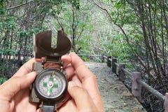 Compasso na mão, no fundo da floresta Imagem de Stock Royalty Free